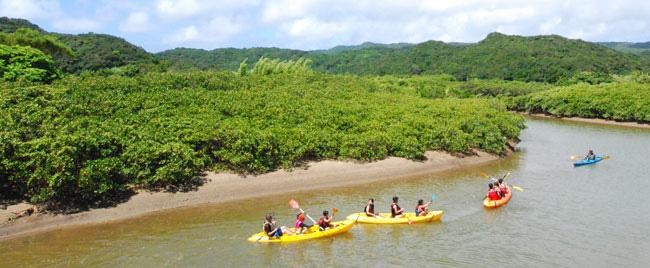 種子島観光ウォータースポーツ